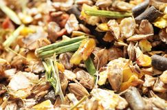 Natural sportive  muesli background. for horse.macro. selective Stock Photography