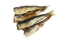 Natural sprats in vegetable oil Stock Photography
