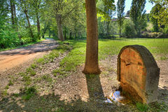 Natural spring in countryside. Piedmont, Italy. Natural spring with cold water in the shade of a tree in the countryside at spring in Piedmont, Northern Italy Stock Image