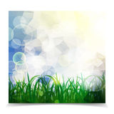 Natural spring green Background With Green Grass And bokeh light. S vector illustration