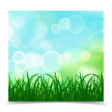 Natural spring green Background With Green Grass And bokeh light. S, Vector Illustration Stock Photo