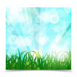 Natural spring green Background With Green Grass, sun rays And b. Okeh lights, Vector Illustration Stock Photos