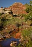 Natural Spring Oasis in the Utah Desert Stock Image