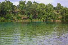 Natural Spring Water royalty free stock photos