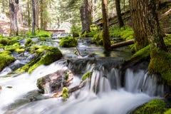 Natural spring water stock image