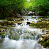 Natural Spring Waterfall Stock Images
