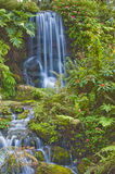 Natural Spring Waterfall Stock Photos