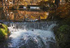 Natural Spring Waterfall with autumn forest Stock Images