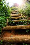Natural staircase Stock Image