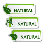 Natural stickers with leaf Stock Photography