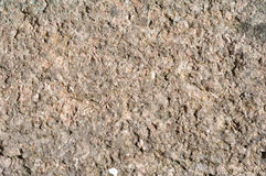 Natural stone gravel texture background.  Stock Image