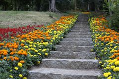 Natural stone landscaping in home garden. With stairs and retaining walls royalty free stock photo