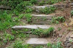 Natural stone staircase Stock Images