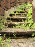 Natural stone stairs landscaping Stock Photos