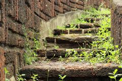 Natural stone stairs landscaping Royalty Free Stock Images