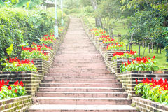 Natural stone stairs landscaping in home. Garden Royalty Free Stock Image