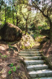 Natural stone stairs. Leading up Stock Images