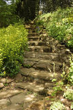 Natural stone stairs portrait Royalty Free Stock Images