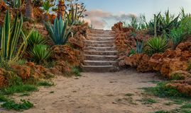 Natural stone stairway with green bushes on both sides and partly cloudy sky at public park in summer time. Natural stone stairway with green bushes on both Royalty Free Stock Photography