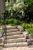 Natural stone steps Stock Photos