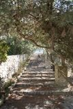Natural stone steps in the park Royalty Free Stock Photos