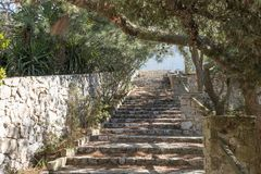 Natural stone steps in the park Royalty Free Stock Image