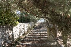 Natural stone steps in the park Royalty Free Stock Photography