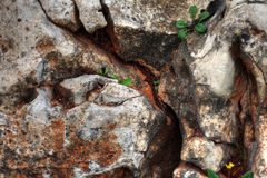 Natural stone structure Royalty Free Stock Photo