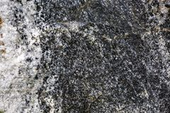 Natural stone texture. Stock Photo