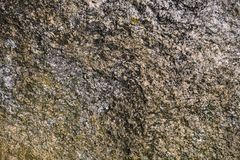 Natural stone texture. Stock Image