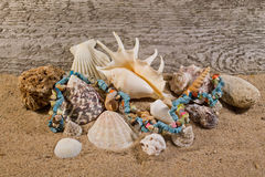 Natural stones necklace and seashells. Royalty Free Stock Images