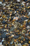 Natural stones a very beautiful shot on the beach in Primorsky Krai. Deluxe beach and a variety of colors Stock Images