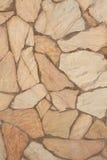 Natural stonewall con las plantas fósiles Imagenes de archivo