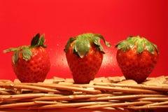 Natural Strawberry  fields. Fotografía de deliciosas fresas orgánicas Stock Photography