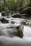 Natural stream Stock Images