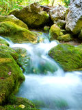 Natural stream flows Stock Photography