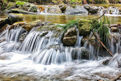 Natural stream. With a small waterfall in spring Stock Images