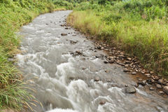 Natural streams. Royalty Free Stock Image