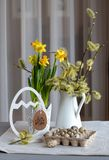 Natural style Easter still life with alder branches, daffodil bulbs and quail eggs royalty free stock image
