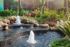 Natural style water scene,Small garden waterscape design Stock Photography
