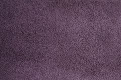 Natural suede is purple. Homogeneous background of purple suede. A small pile, quality workmanship. The use of natural leather, furrier art Stock Image