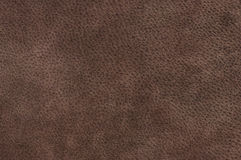 Natural suede texture Stock Photography