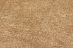 Natural suede texture Royalty Free Stock Images