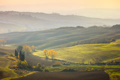 Natural Sunny Autumn landscape - Wavy fields at sunrise Stock Photography