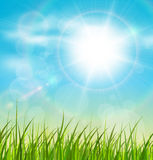Natural sunny background. Spring natural sunny background with vector sun and grass Royalty Free Stock Photo