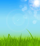 Natural Sunny Background Vector Illustration Royalty Free Stock Image