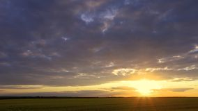 Natural Sunset Sunrise Over Field Or Meadow. Bright Dramatic Sky Over Ground. Countryside Landscape Under Scenic stock video