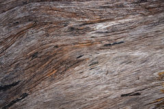Natural surface of old teak wood Stock Images