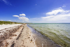 Natural swedish beach in summertime Stock Image