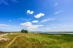 Natural swedish beach in summertime Royalty Free Stock Image